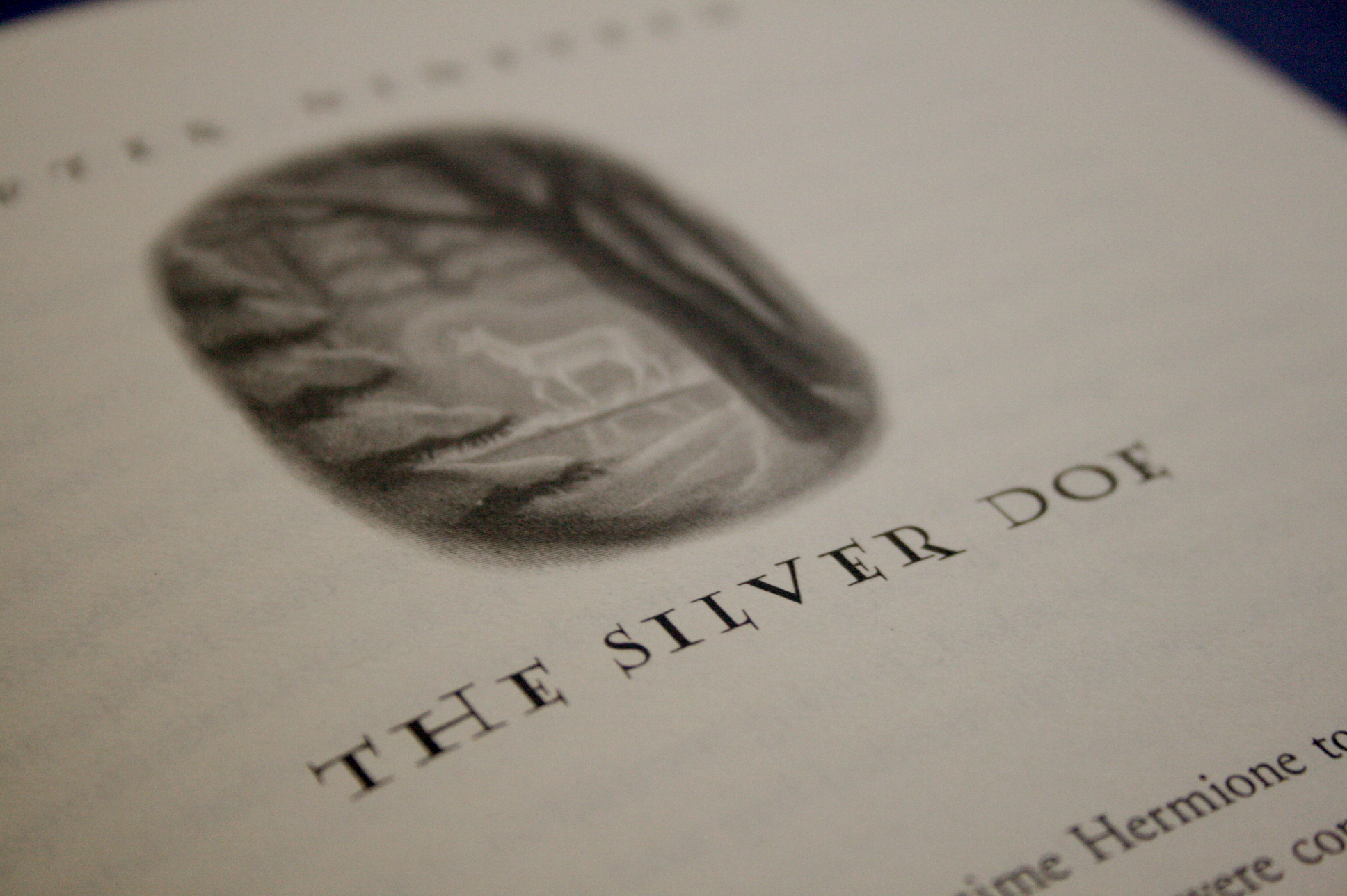 the silver doe chapter from harry potter